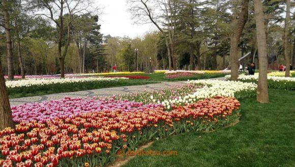 イスタンブール エミルガン公園