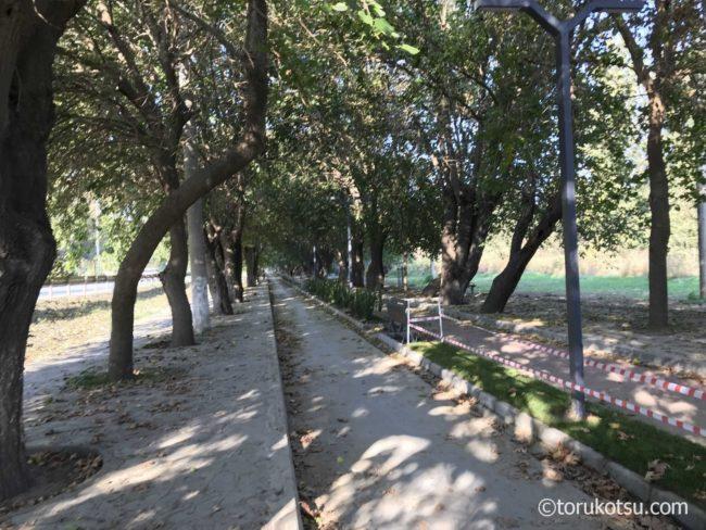 【世界遺産エフェソス観光】アルテミス神殿跡までの道