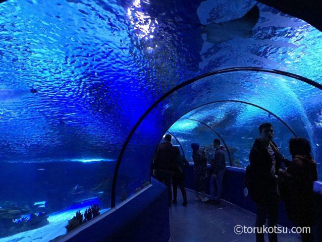 エスキシェヒルの水族館