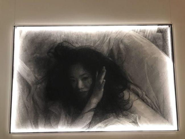 オドゥンパザル近代美術館の作品