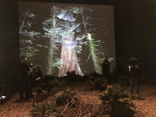 オドゥンパザル近代美術館の企画展
